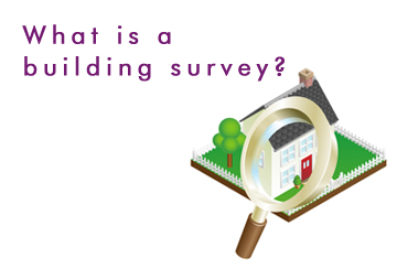 What is a building survey?
